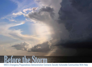 Before the Storm cover image